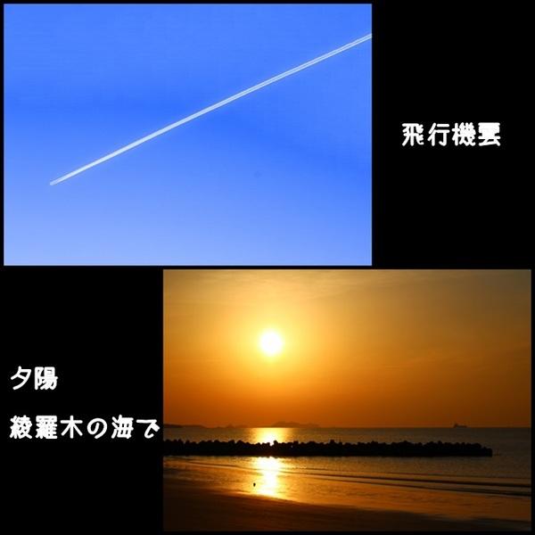 飛行機雲&夕陽.jpg